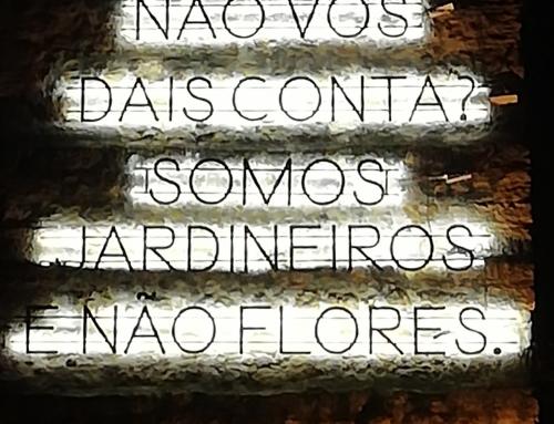 Somos Jardineiros e Não Flores….